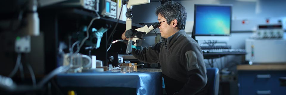 Ken Yoshida, an IUPUI School of Engineering and Technology professor, looks through a microscope.